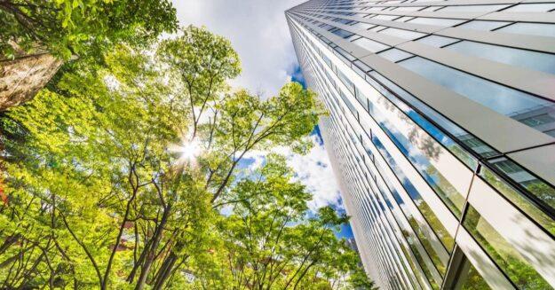 Grüne Baustoffe 2021